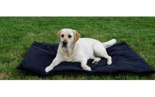Mata piknikowa dla psa -...